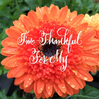thankful29